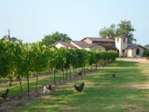 Della Terra Farm